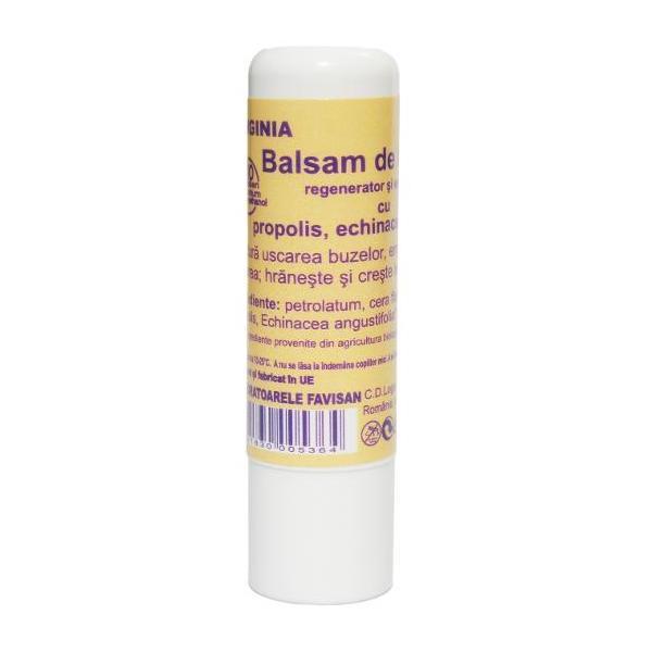 Balsam de Buze cu Propolis Virginia Favisan, 5ml imagine produs