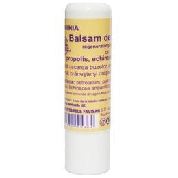 Balsam de Buze cu Propolis Virginia Favisan, 5ml