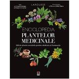Enciclopedia plantelor medicinale. Larousse - Gerard Debuigne, Francois Couplan, editura Rao