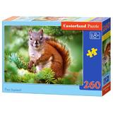 Puzzle 260 - Pine Squirrel