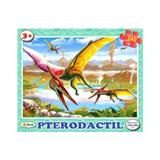 Puzzle - Pterodactil