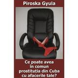 Ce poate avea in comun prostitutia din Cuba cu afacerile tale? - Piroska Gyula, editura Ceconi