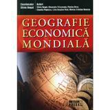 Geografie economica mondiala - Silviu Negut, Gheorghe Vlasceanu, Florina Bran, editura Meteor Press