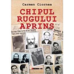Chipul rugului aprins - Carmen Ciornea, editura Eikon