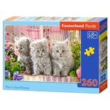 Puzzle 260. Three Grey Kittens