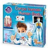 Joc educativ - Human body. Corpul uman