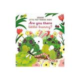 Are you there Little Bunny?, editura Usborne Publishing