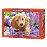 Puzzle 1000. Puppy in Basket