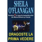 Dragoste la prima vedere - Sheila O'Flangan, editura Orizonturi