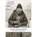 Sa topim ghetarii sufletului. 10 ani cu Hristos in Scandinavia - Macarie Dragoi, editura Sophia