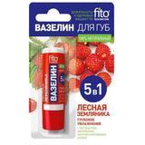 Vaselina-Stick pentru Buze 5 in 1 Hidratant Fitocosmetic, 4.5g