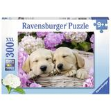 Puzzle catei in patura, 300 piese - Ravensburger
