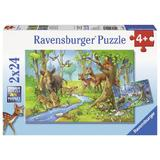 Puzzle animale padure, 2x24 piese - Ravensburger