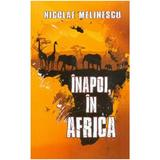 Inapoi, in Africa - Nicolae Melinescu, editura Cetatea De Scaun