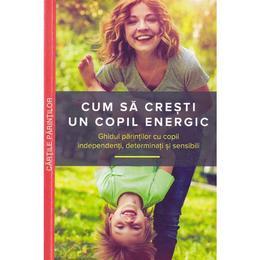 Cum sa cresti un copil energic - Mary Sheedy Kurcinka, editura Multi Media Publishing