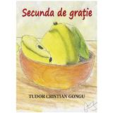 Secunda de gratie - Tudor Cristian Gongu, editura Smart Publishing