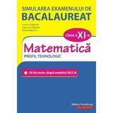 Simularea examenului de bacalaureat. Matematica - Clasa 11 - Profil Tehnologic - Lucian Dragomir, editura Paralela 45