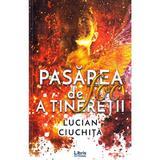 Pasarea de foc a tineretii - Lucian Ciuchita, editura Libris Editorial
