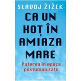 Ca un hot ziua in amiaza mare - Slavoj Zizek, editura Cartier