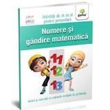 Numere si gandire matematica 5-6 ani - Activitati de zi cu zi pentru prescolari, editura Gama