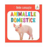 Animalele domestice - bebe cunoaste, editura Gama