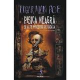 Pisica neagra si alte povestiri de groaza - Edgar Allan Poe, editura Polirom