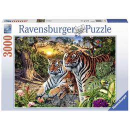 Puzzle tigri, 3000 piese - Ravensburger