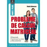 Probleme de calcul matriceal - Florin Stanescu, editura Cartea Romaneasca