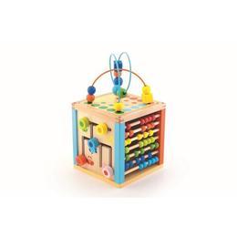 Cub educativ pentru copii din lemn cu socotitoare si activitati, Multicolor Nebunici