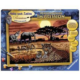 Pictura pe numere safari african - Ravensburger