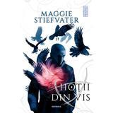 Hotii din vis (Seria Fratia Corbilor, partea a II-a), autor Maggie Stiefvater, editura Nemira
