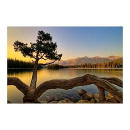 Tablou Canvas Modern, ArtHouse Dimensiunea 90x60 ART57