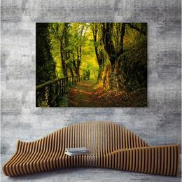 Tablou Canvas Modern, ArtHouse Dimensiunea 80x50 ART47