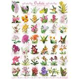 Puzzle 1000 piese Orchids