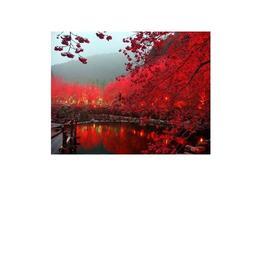 Tablou Canvas Modern, Dimensiunea 80x50 ART120