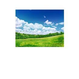 Tablou Canvas Modern, Dimensiunea 70x45 ART78