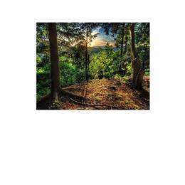 Tablou Canvas Modern, Dimensiunea 100x70 ART54