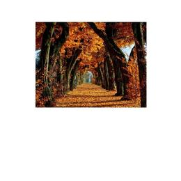 Tablou Canvas Modern, Dimensiunea 120x80 ART80