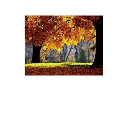 Tablou Canvas Modern, Dimensiunea 80x50 ART57