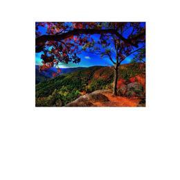 Tablou Canvas Modern, Dimensiunea 80x50 ART76