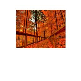 Tablou Canvas Modern, Dimensiunea 50x30 ART85