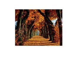 Tablou Canvas Modern, Dimensiunea 80x50 ART80
