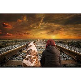 Tablou Canvas cu Animale 918 - 20 x 30 cm