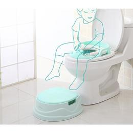 Olita multifunctionala Potty 3 in 1 Aquamarine