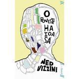 O poveste haioasa - Ned Vizzini, editura Grupul Editorial Art
