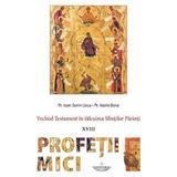 Vechiul Testament in talcuirea Sfintilor Parinti: Profetii mici - Ioan Sorin Usca, Vasile Bora, editura Christiana