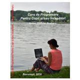 Curs De Programare Pentru Copii si/sau Incepatori, autor Gabriel Braharu editura De Vis Software
