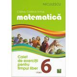 Matematica - Clasa a VI-a - Caiet de exercitii pentru timpul liber - Calina-Cristina Irimie, editura Niculescu