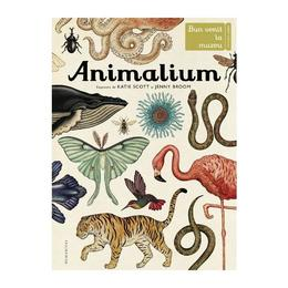Animalium - Katie Scott, Jenny Broom, editura Humanitas