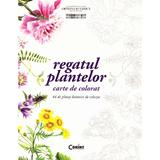Regatul plantelor - Carte de colorat, editura Corint